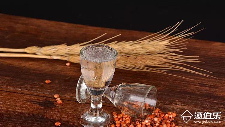 酒伯樂:醬香型白酒的特點有哪些,你真的了解醬香型酒嗎?